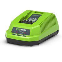 Greenworks Chargeur avec VDE 40 V 2 A