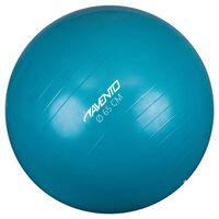 Avento Ballon de fitness/d'exercice Diamètre 65 cm Bleu