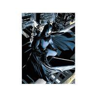 SD TOYS - Affiche verre DC Comics Batman