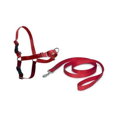 Easy walk harnais M rouge tr de poitrail