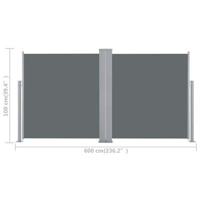 vidaXL Auvent latéral rétractable Anthracite 100 x 600 cm