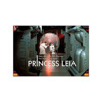 SD TOYS - Verre à affiche Star Wars Princess Leia
