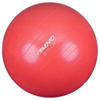 Avento Ballon de fitness/d'exercice Diamètre 55 cm Rose