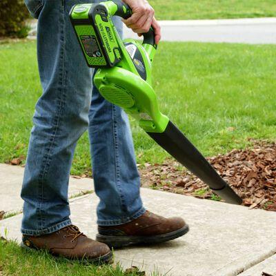 Greenworks Aspirateur de pelouse à main 40 V Vert