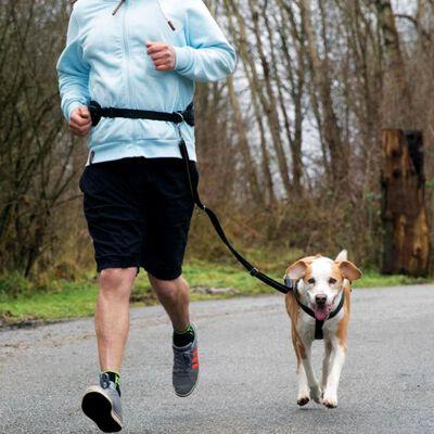 TRIXIE Ceinture de jogging pour chiens Taille L Noir 12768