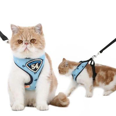Harnais pour animaux HooPet avec laisse, Bleu - M