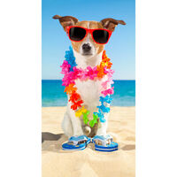 Good Morning Serviette de plage BUDDY 75x150 cm Multicolore